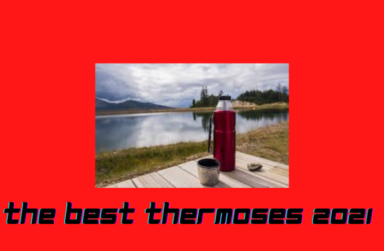 The Best Thermoses 2021